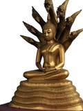 Meditating Buddha Protected By King Naga Stock Photo