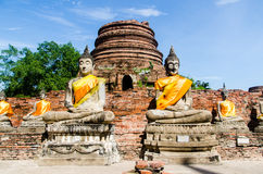 Meditating Buddhas Stock Photography