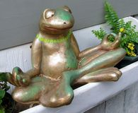 Meditating Frog Royalty Free Stock Images