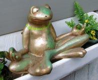 Meditating Frog Royalty Free Stock Images