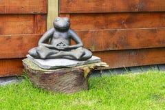 Meditating Frog Royalty Free Stock Photo