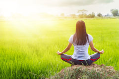 Meditating in the lotus posture on rice field background Royalty Free Stock Image