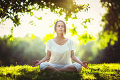 meditation Imagem de Stock Royalty Free