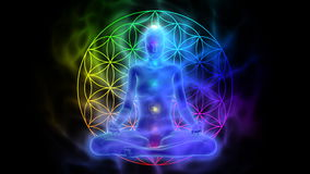 Meditation - aura, chakras, symbol flower of life. Animation of woman meditating - aura, chakras, symbol flower of life