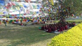 Meditation av tibetana munkar Lumbini royaltyfri fotografi