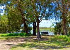 Meditation Bench: Western Australia Wetlands royalty free stock photo