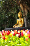 Meditation Buddha statue in tulips. Garden Under the Bodhi tree Royalty Free Stock Photo