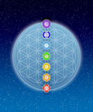In meditation with chakras and flower of live Stock Photography