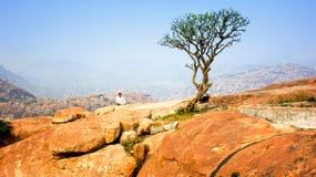 Meditation för buddistisk munk på berg Arkivbild