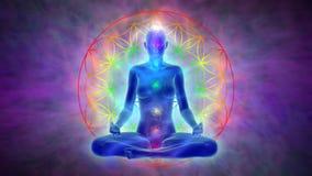 Meditation - flower of life. Animation of woman in meditation, symbol flower of life, visible aura and chakras
