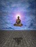 Meditation Man Royalty Free Stock Image