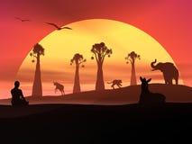 Meditation och djurliv vid solnedgång Royaltyfri Fotografi