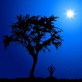 Meditation Stock Photography