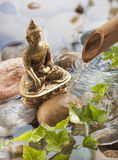 Meditation with plants and water around Stock Photos