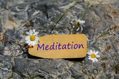 Meditation label. The meditation text written in the label with chamomile flower on the rock stock photography