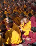 Meditation of Tibetan Buddhist Monks during festival Royalty Free Stock Images