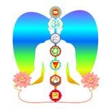 Meditation yoga man with chakras and Lotus flower. vector illust. Meditation yoga man with chakras and Lotus flower vector illustration Stock Photography