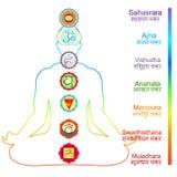 Meditation yoga man with chakras vector illustration. Meditation yoga man with chakras. vector illustration Stock Photos