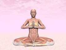 Meditation yoga pose for woman with muscle visible Stock Image