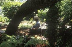 A meditator in Los Angeles California Stock Image