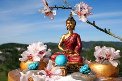 Meditazione del giardino di zen del Buddha Immagine Stock