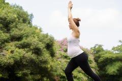 Meditazione di rilassamento di yoga del parco della pancia della madre della donna incinta Fotografie Stock