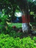 Meditazione di Shiva fotografie stock libere da diritti