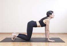 Meditazione di yoga Immagini Stock