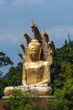 Mediteer het gouden standbeeld van Boedha op een troon van Cobra Stock Foto's