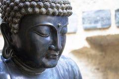Meditera den japanska Buddhastatyn Royaltyfri Bild