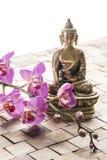 Meditera för brunnsortbehandling och fengshuivitalisering Royaltyfri Foto