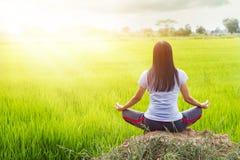 Meditera i lotusblommaställingen på risfältbakgrund royaltyfri bild