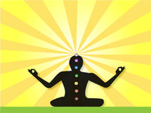 meditera yogi Royaltyfri Foto