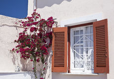 Mediteranean rustic window. Sun on rustic window in Mediterranean style decorate with Bougainvillea Royalty Free Stock Images