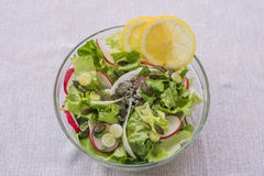 Mediterenean delicious healthy vegetarian lettuce salad, with red and white radish, spring garlic,  lemon slices and basil. Delicious healthy vegetarian lettuce Royalty Free Stock Photography