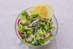 Mediterenean läcker sund vegetarisk grönsallatsallad, med den röd och vit rädisan, vårvitlök, citronskivor och basilika Royaltyfri Fotografi