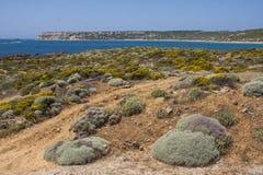 Mediterraan eilandlandschap met overzees; Bozcaada, Turkije royalty-vrije stock afbeelding