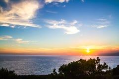 Mediterraan pijnboomsilhouet tegen een zonsondergang Royalty-vrije Stock Foto's