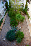 Atrium Courtyard gardner garden. Mediterran greenery between buildings. We are showing the work of a gardener in a courtyard. some people call it atrium Royalty Free Stock Photos