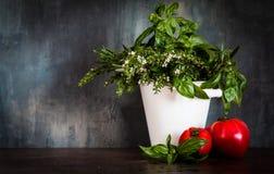 Mediterrane achtergrond met verse ingrediënten stock foto's