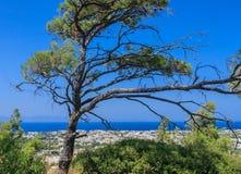Mediterrane kusttoevlucht Ialyssos Het eiland van Rhodos Stock Afbeeldingen