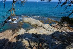 Mediterrane rotsachtige kust & takken stock afbeeldingen
