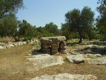 Mediterrane thyme Stock Foto's
