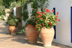 Mediterrane Tuin Stock Afbeeldingen