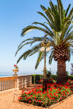 Mediterrane Tuin Stock Fotografie
