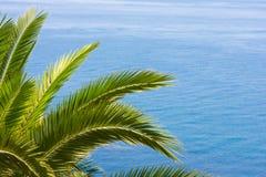 Mediterranean background Royalty Free Stock Photo