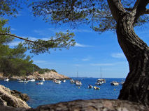 Mediterranean bay. A bay on the mediterranean coast of france royalty free stock images