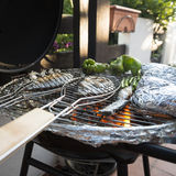 Mediterranean BBQ Royalty Free Stock Photography