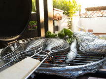 Mediterranean BBQ Royalty Free Stock Photos