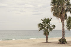 A mediterranean beach Royalty Free Stock Images